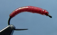 Tying the Chewee Bloodworm