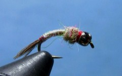 Tying Lance Egan's Rainbow Warrior