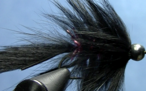 Squirrel Hair leech fly tying