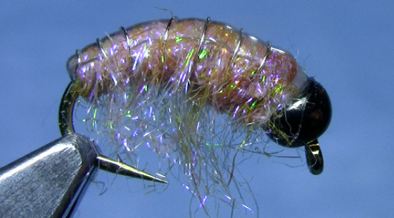 Scud Pattern Archives Dakota Angler Outfitter Black Hills Fly Fascinating Scud Fly Pattern