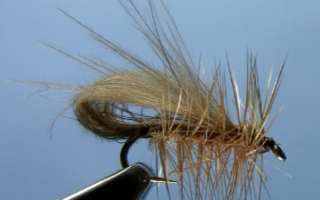 cdc bubble wing caddis fly