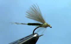CDC Extended Body Dun Fly Tying Video