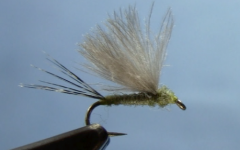 Tying the CDC Mayfly Dun