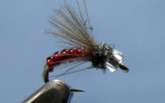 CDC Midge Emerger
