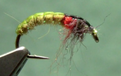 Tying the Czech Nymph