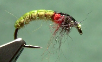 czech nymph fly tying
