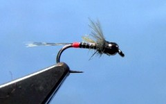 Czech Quill Body Nymph Fly Tying Video