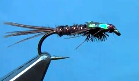 fly tying flashback pheasant tail nymph