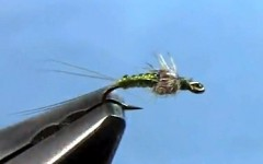 Killer Mayfly Nymph