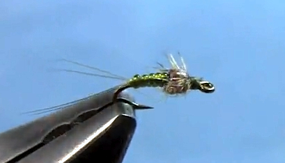killer mayfly nymph fly tying
