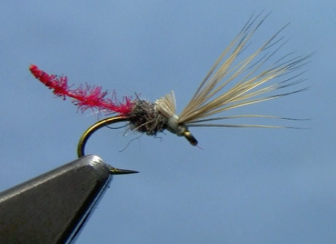 Midges archives page 2 of 3 dakota angler outfitter for Midge fly fishing