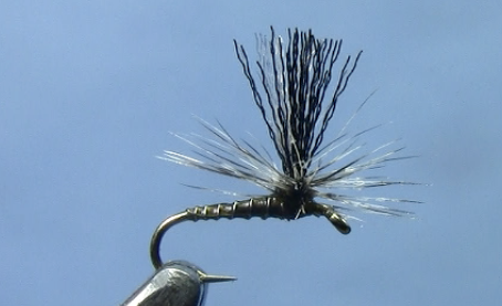 Midge Patterns Video- Sipper Midge