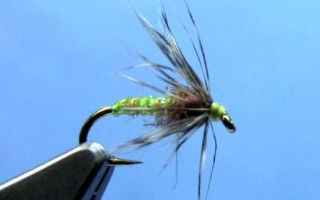 soft hackle fly