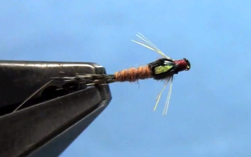 split case pmd nymph fly tying