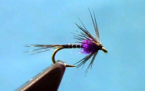 spring soft hackle fly tying