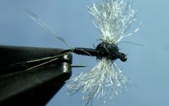 Engle's Sunken Trico Fly Tying Video