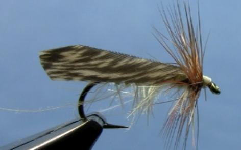 tape wing caddis fly pattern
