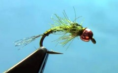 Tungsten Psycho Nymph