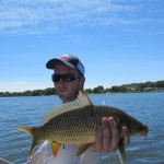 Missouri River Carp