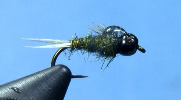 barrs tung teaser nymph