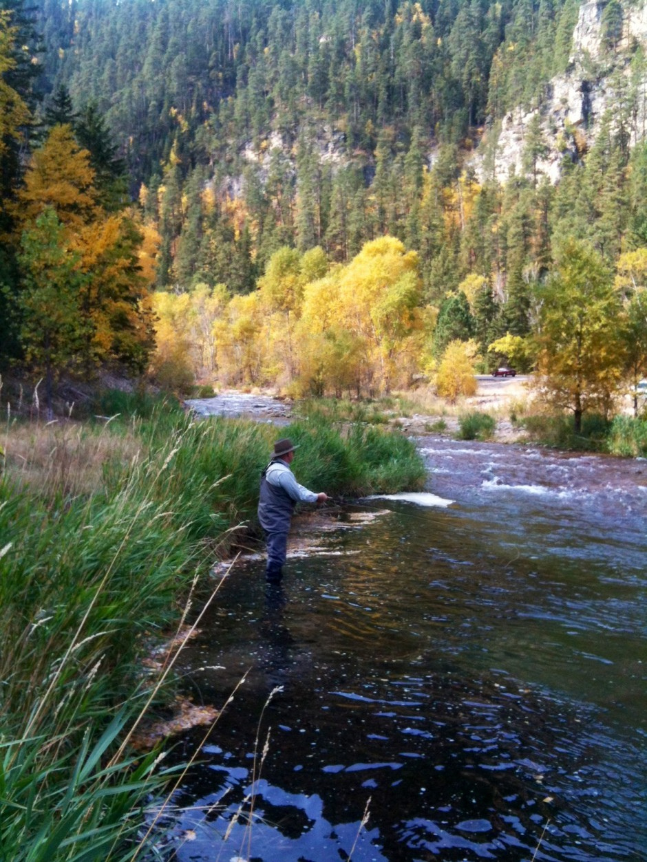 Fall Fishing Spearfish Creek Black Hills