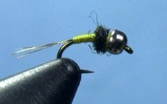 Tying the Yellow Bellied Baetis Nymph