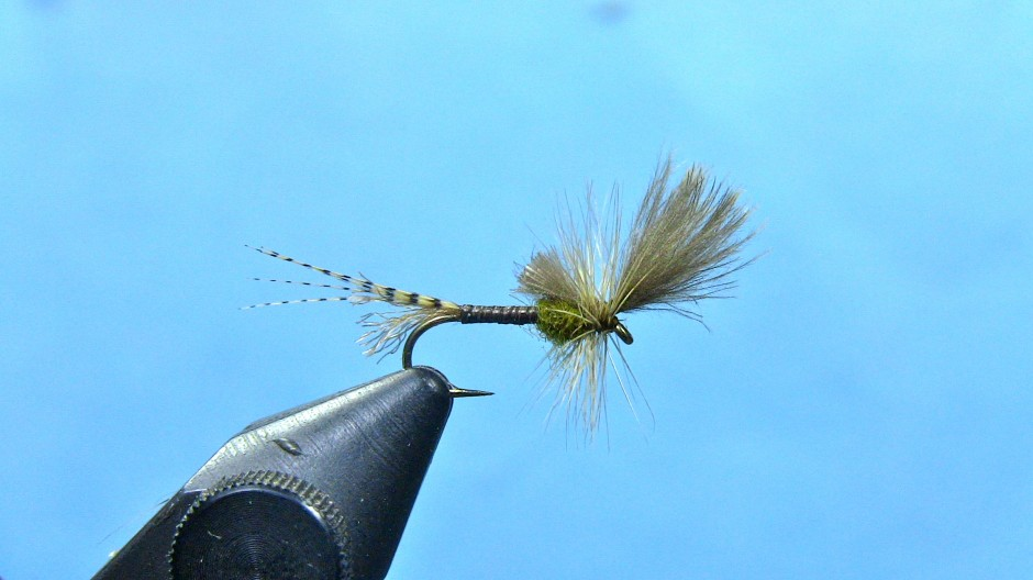 last chance cripple baetis (blue winged olive)
