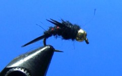 Tying the North Fork Special