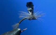 Tying Dave's M-Wing Emerger