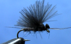 Tying the Fluttering Black Stonefly