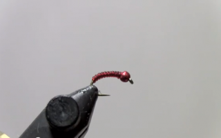 Daves Tungsten Blood Midge