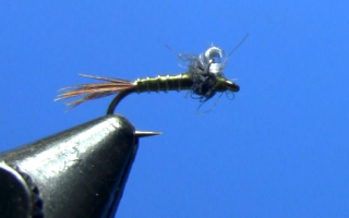 Fly Tying with Dave Gamet Bubble Back Baetis Nymph