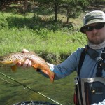 Black Hills Gold - Rapid Creek Brown Trout - June 2014 Fly Fishing