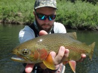 Nice Black Hills Rainbow June 2014