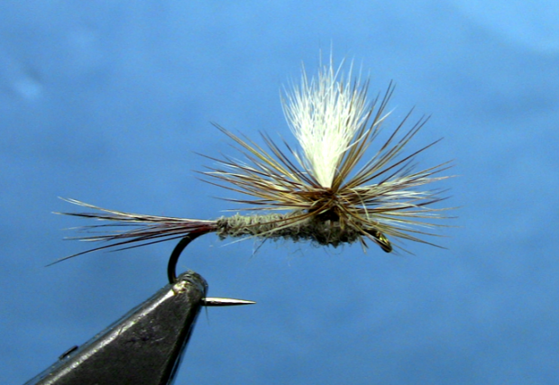 Parachute Adams Fly Tying Video