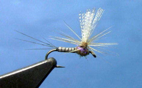 Upright Callibaetis Spinner Fly Tying Video