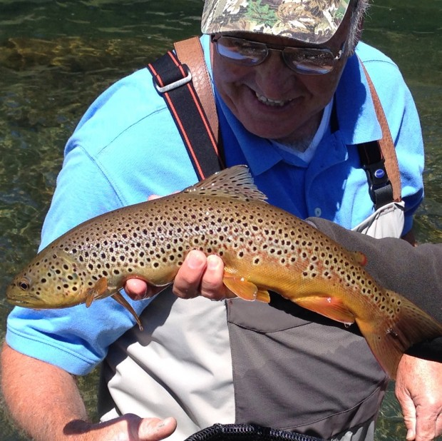 brown trout guided black hills fly fishing