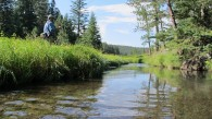 trout fishing black hills fishing flyfishing