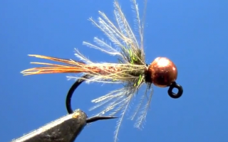 Tungsten Jig Flashback Pheasant Tail Nymph