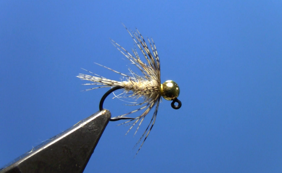 soft hackle tungsten jig hare's ear nymph