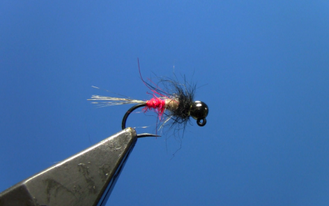 tungsten jig red butt nymph