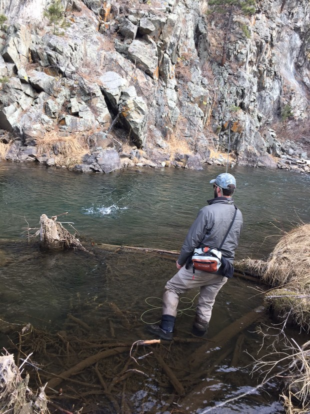 Rapid Creek Black Hills Winter Fly Fishing Trout 2