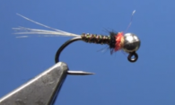 Party Crasher Jig Nymph