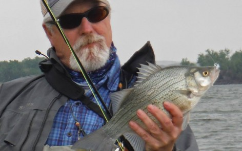Jon White Bass