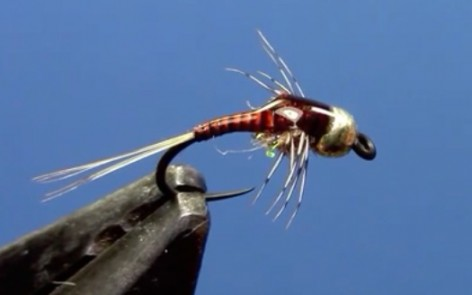 tungsten quill body nymph fly tying