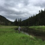 Black Hills Fishing report fly fishing trout june 2015