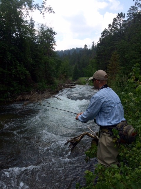 black hills fly fishing 2015 trout
