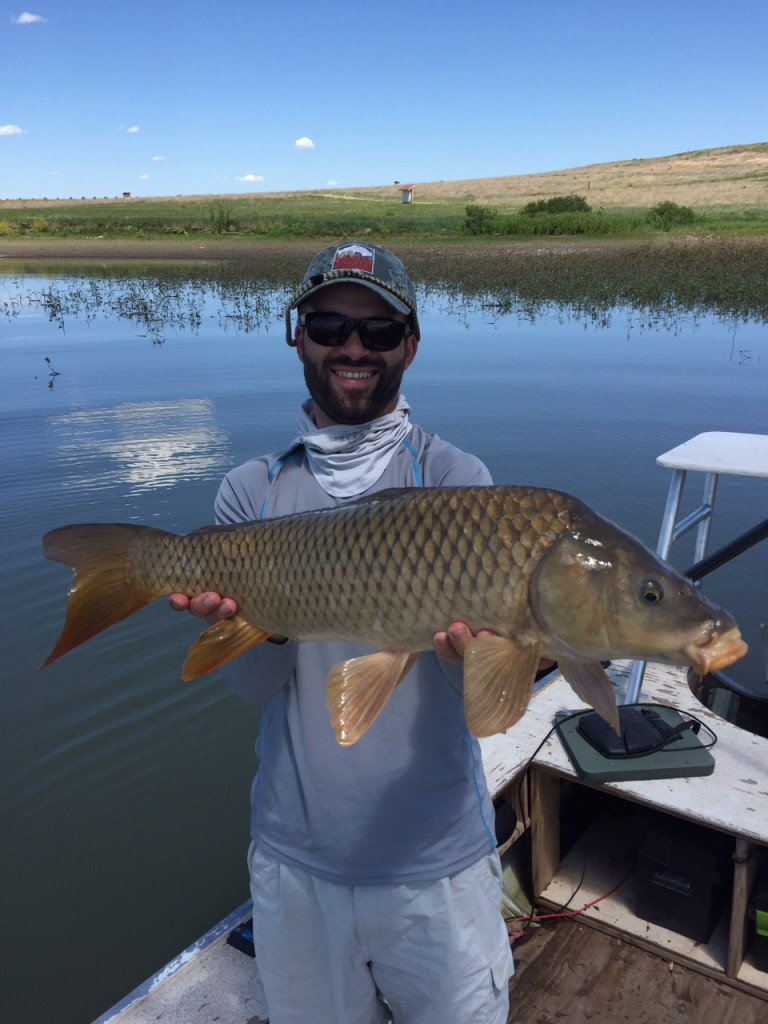 Black hills carp fly fishing update dakota angler for Fly fishing south dakota