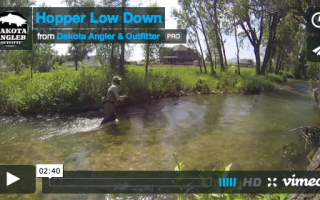 hopper low down video image black hills fishing