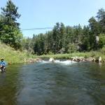 Black Hills Fly Fishing August 2015 Rapid Creek